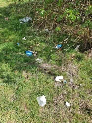 20210403 Müll achtlos im Gebüsch<br> Foto: Lena Thies