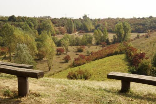 Blick ins Naturlehrgebiet<br>Foto: GRKW